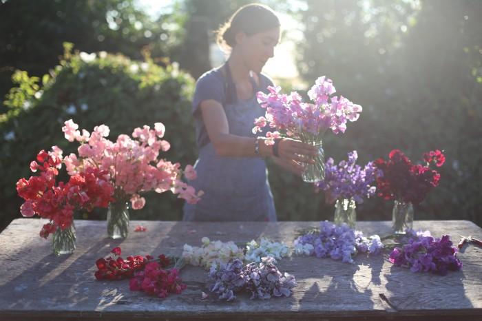 sweet pea sorting Floret
