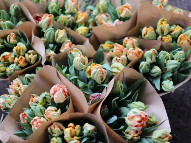 Bouquets of tulips wrapped in paper