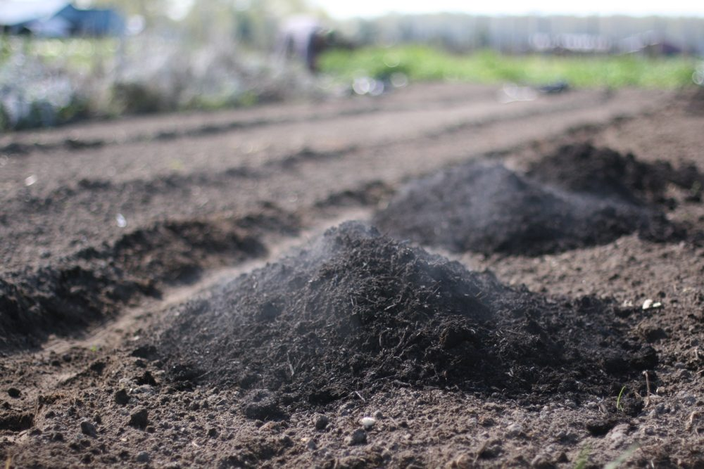 Compost and organic fertilizer for bed preparation