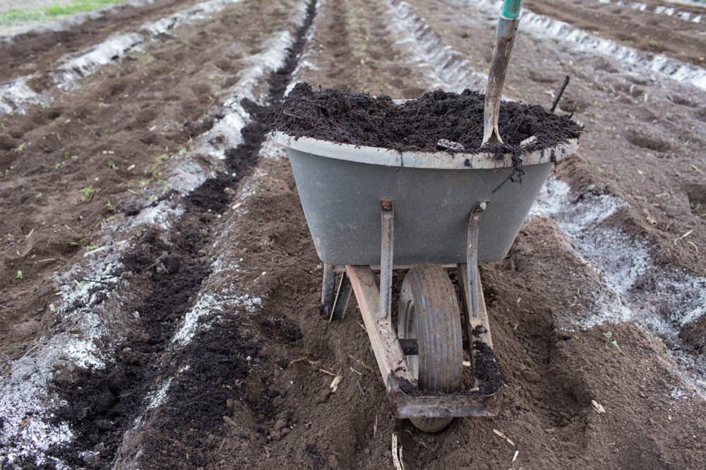 A wheelbarrow full of compost being spread on a field