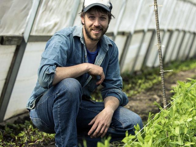 A man kneeling in a greenhouse