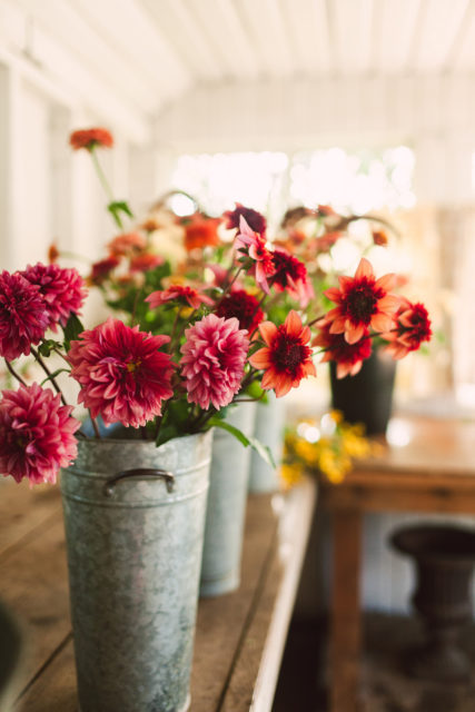 View More: http://wildflowersphotos.pass.us/floret