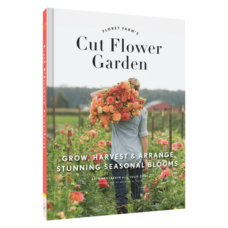 Fine Cut Flower Garden To Inspiration