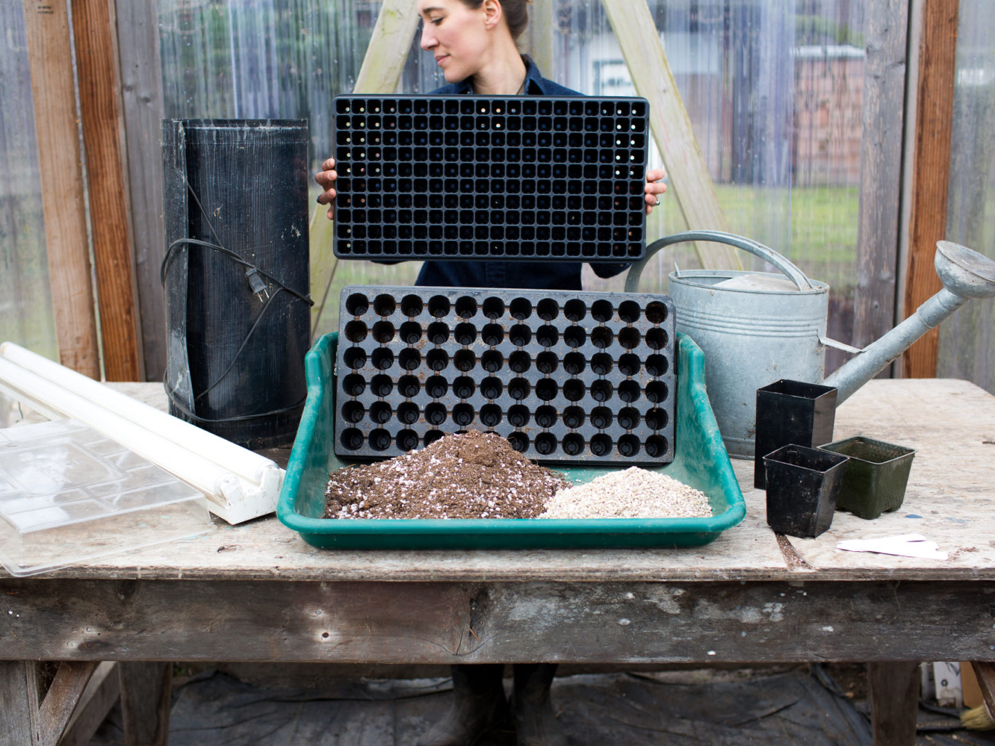 Erin Benzakein showing seed starting materials