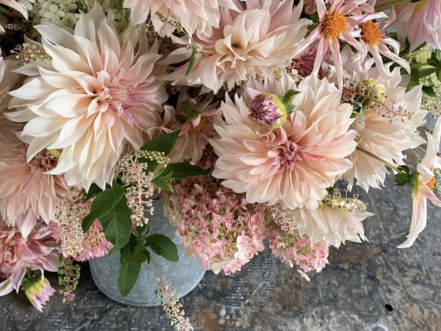 A Year in Flowers bouquet week 34 featuring cafe au lait dahlia bouquet
