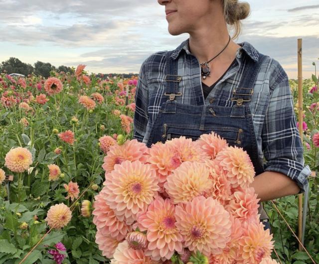 A Year in Flowers Week 37