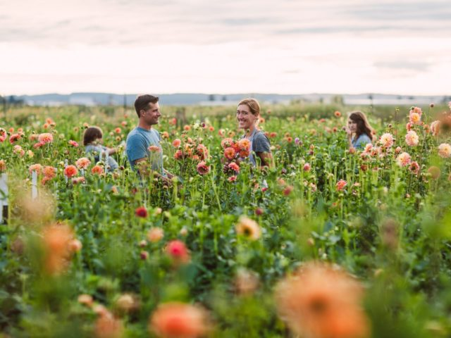 The Benzakein family in the Floret dahlias field