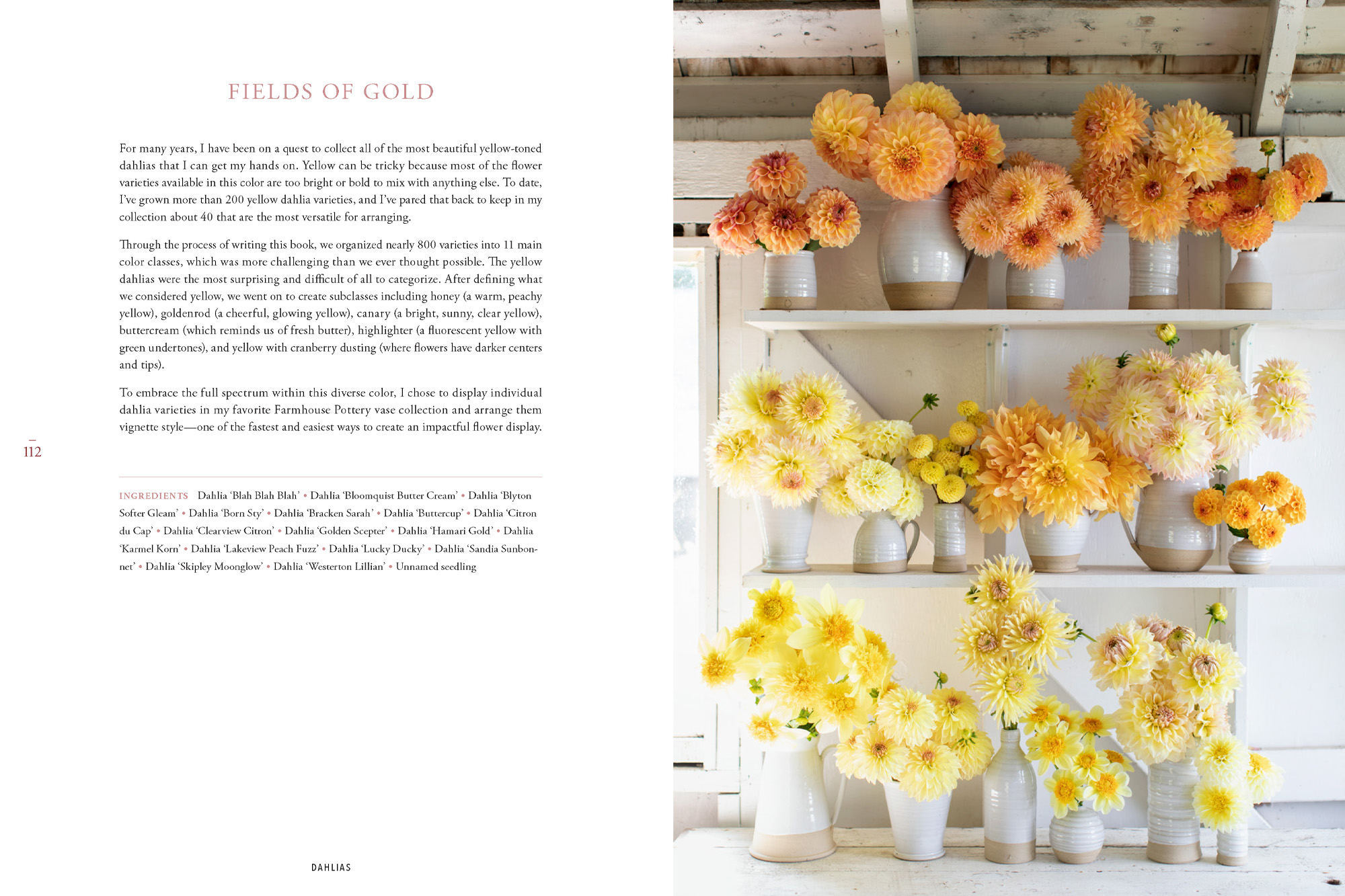 A page from Floret Farm's Discovering Dahlias