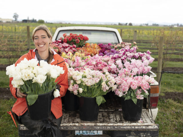 Erin Benzakein sitting on a pickup truck with buckets of tulips