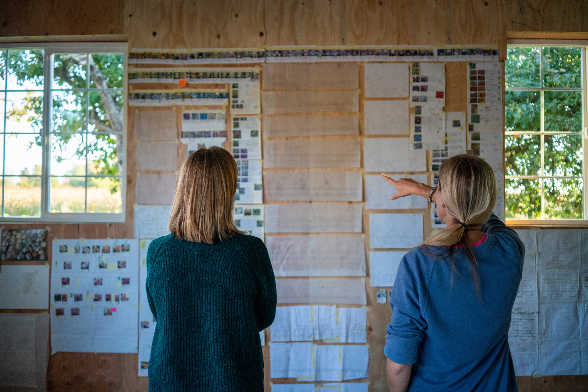 Erin Benzakein and Becky Crowley hang up planning material for the new farm design.